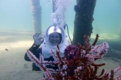 Under Sea Walkers