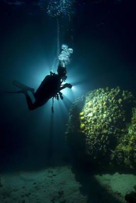 Night Dive